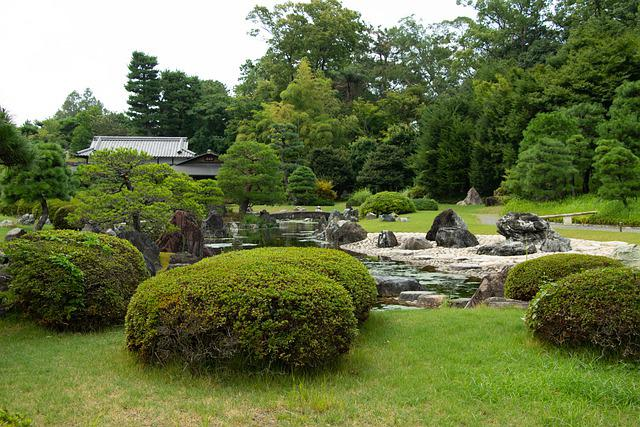 Tokyo, Japanese, Garden, Japan, Pond, Bushes, Trees
