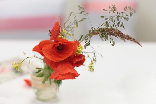 Poppy, Flower, Wedding, Deco, Marry, Decoration