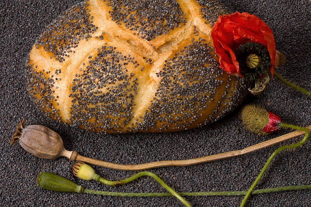 Poppy, Seeds, Roll, Mohnbrötchen, Boll, Poppy Seeds