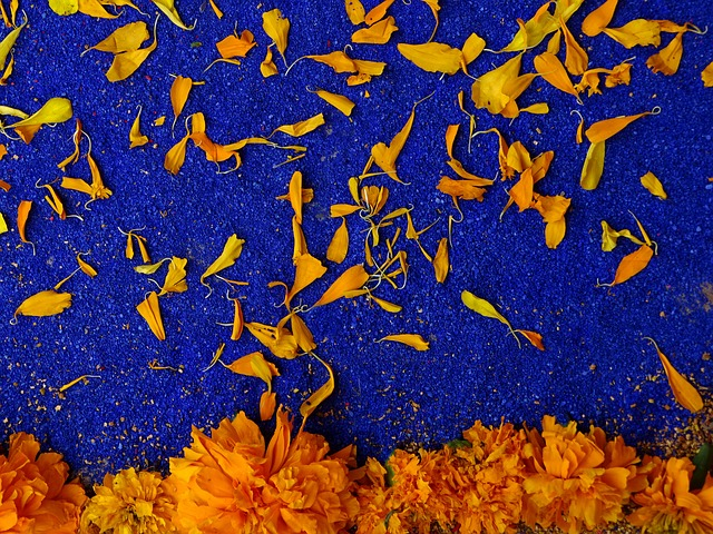 Day Of The Dead, Color, Blue, Orange, Popular Festivals