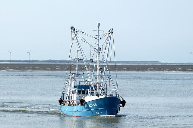 Water, North Sea, Wadden Sea, Port, Fishing Vessel, Sea