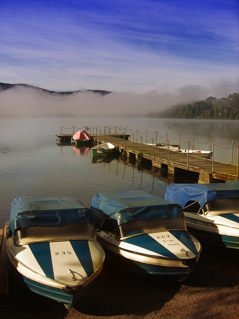 Boats, Port, Web, Lake, Water, Dock, Black Forest