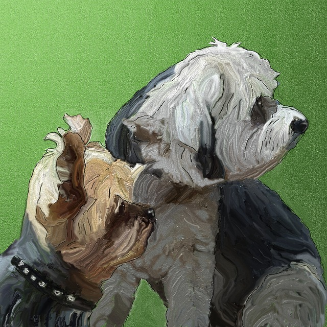 Friends, Dogs, Pet, Best Friends, Head, Portrait