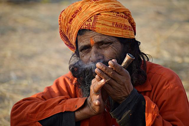 Man, Person, Portrait, India, Spiritual, Hermit, Beard