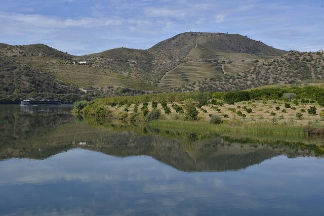 Portugal, Douro, Panorama, Landscape, River