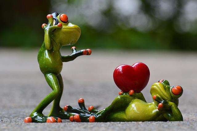 Frogs, Love, Headphones, Music, Valentine's Dance, Pose