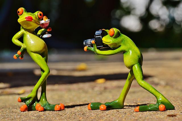 Frog, Photographer, Model, Photo Model, Lady, Posing