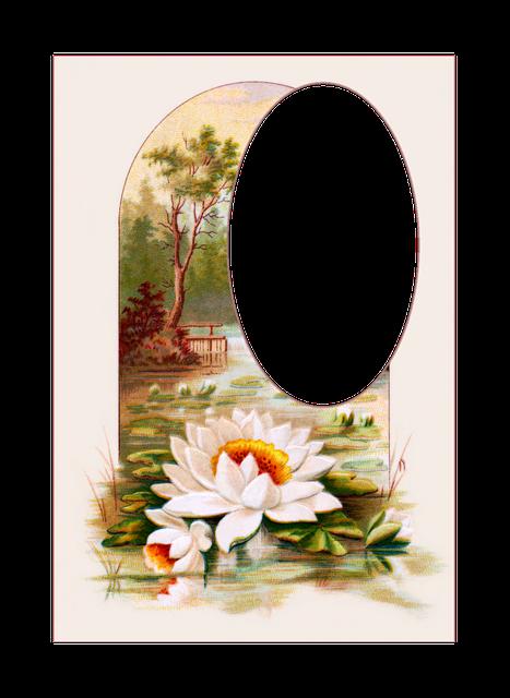 Vintage, Postcards, Flowers, Victorian, Frame, Floral
