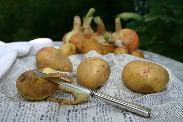 Potato, Cook, Eat, Food, Tasty, Kitchen, Fresh