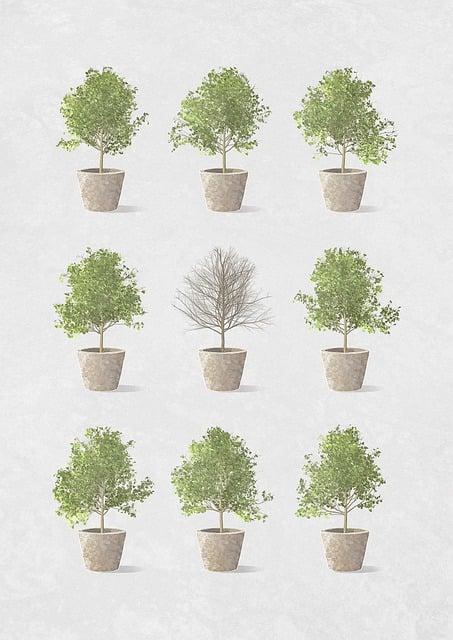 Plants, Pots, Grow