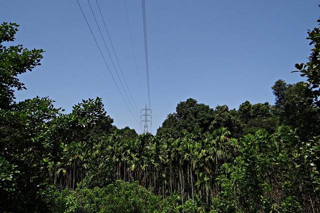 Pylon, Electric Power, Power, Lines, High Voltage