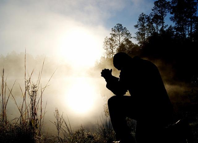Man, Fog, Silhouette, Kneeling, Kneel, Pray, Praying