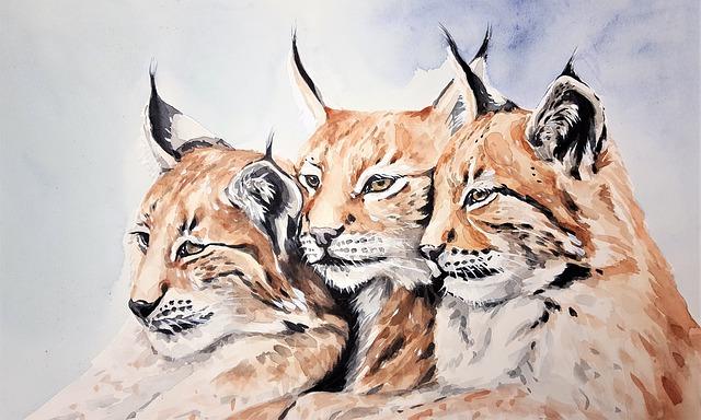 Feature, Three, Three Animal, Nature, Predator, Beast