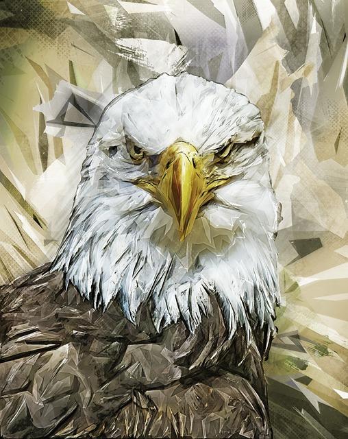 Eagle, Bird, Predator, Bald Eagle, Nature, Symbol