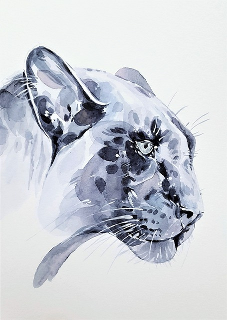 Black, Cat, Panter, Animal, Predator, Nature, Painting