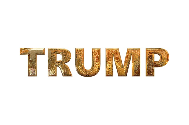 Trump, President, Usa, Donald, Republican, America