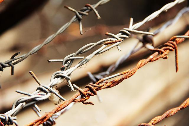 Barbed Wire, Sting, Wire, Wire Fence, Prickly, Metal