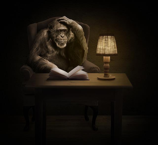 Monkey, Chimpanzee, Book, Thinking, Primate, Hairy