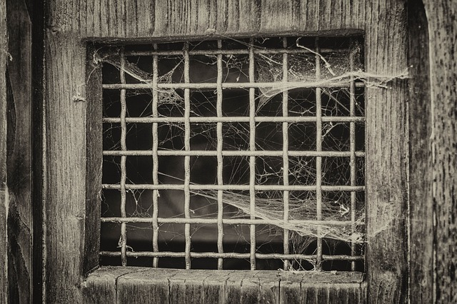 Window, Grid, Door, Spider Web, Atmosphere, Old, Prison