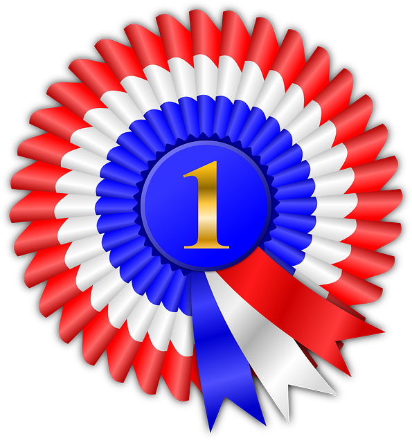 Award, Prize, Ribbon, Winner, Win, Competition, Honor