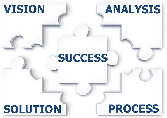 Puzzle, Success, Analysis, Problem, Solution, Growth