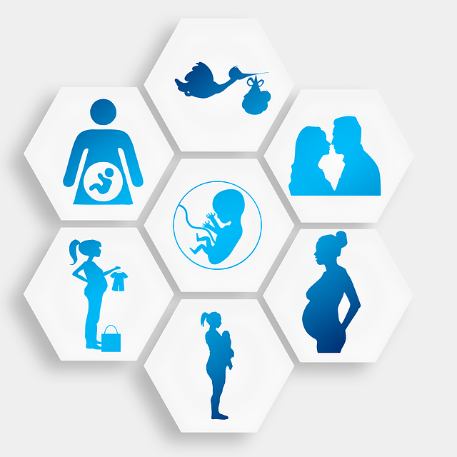 Pregnancy, Pregnant, Stork, Love, Lovers, Procreation