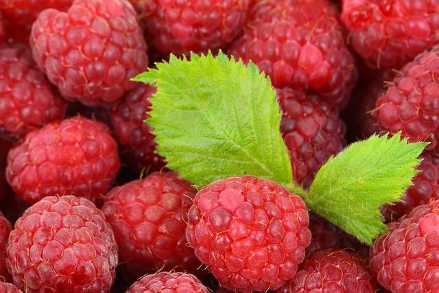 Berries, Raspberries, Fruits, Produce, Harvest, Organic