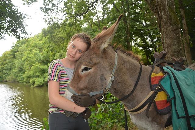 Woman, Young Woman, Promenade, Hiking, Donkey, Hug