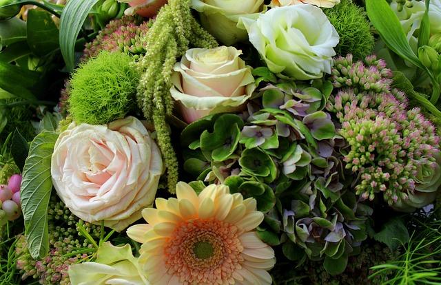 Flowers, Blossom, Bloom, Shooting Club, Protect, Close