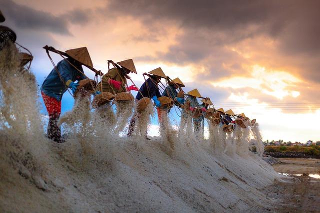 Salt, The Smoke, Vietnam, Field, Khanh Hoa, Province
