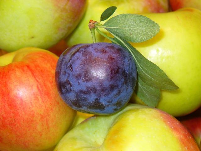 Fruits, Prune, Apples, Food, Organic, Healthy, Sweet