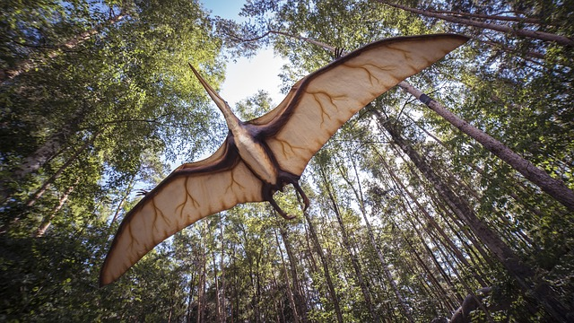 Pterosaur, Reptile, Extinct, Prehistoric Times, Replica
