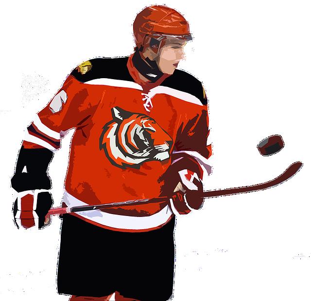 Hockey, Player, Puck, Hockey Player, Tigers, Sports