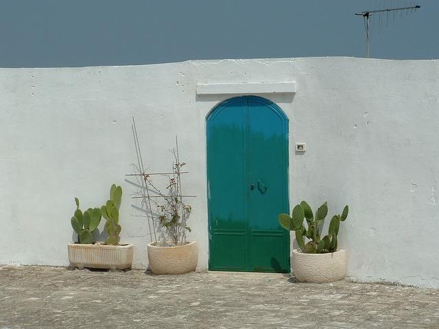 Door, Puglia, Cactus