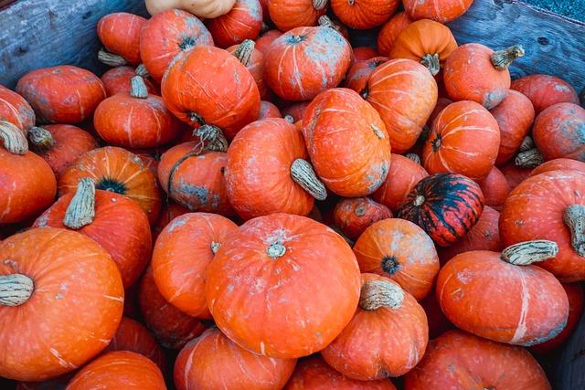 Pumpkin, Thanksgiving, Holiday, Fall, Autumn, Food