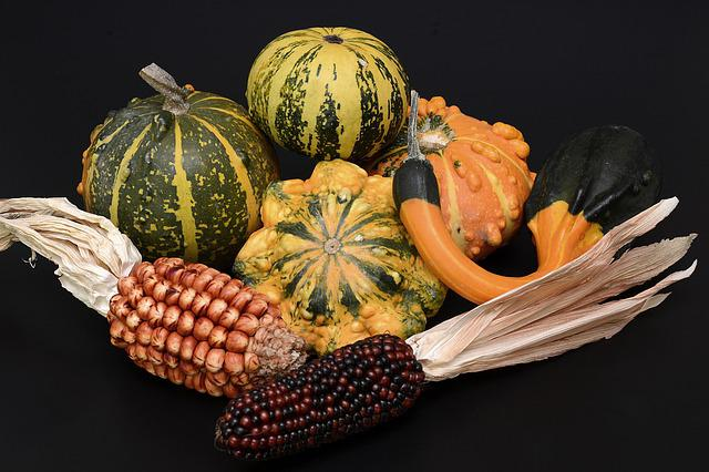 Pumpkin, Gourd, Autumn, Thanksgiving, Decoration