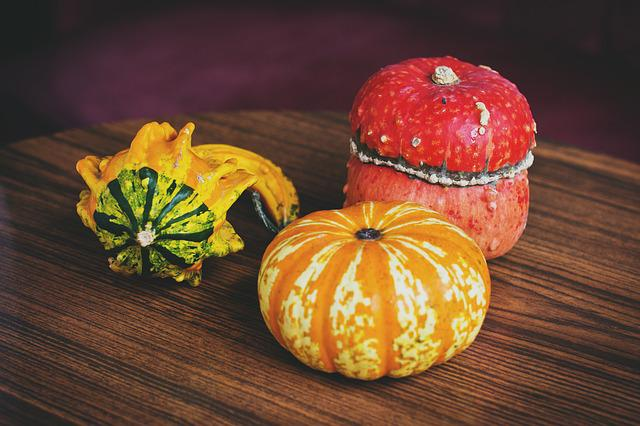 Nature, Halloween, Olsztyn, Pumpkin, Pumpkins, Table