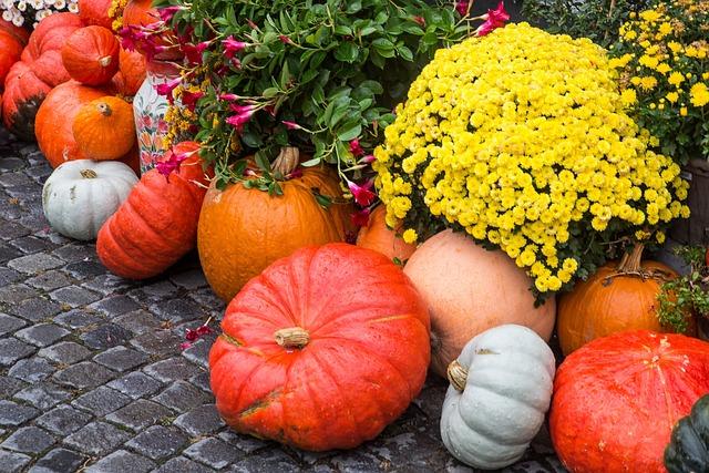 Pumpkin, Squash, Thanksgiving, Pumpkin Soup, Halloween