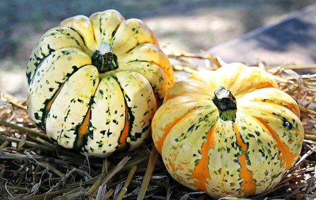 Pumpkins, Gourds, Vegetables, Harvest, Organic, Produce