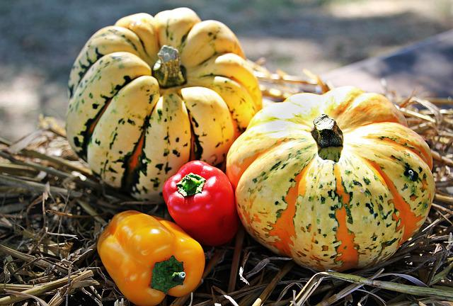 Thanksgiving, Pumpkins, Paprika, Autumn