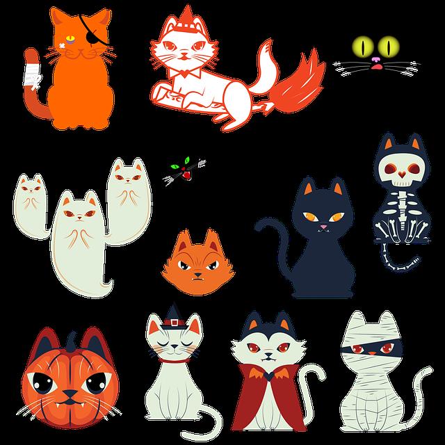 Halloween, Cats, Pets, Halloween Decorations, Pumpkins