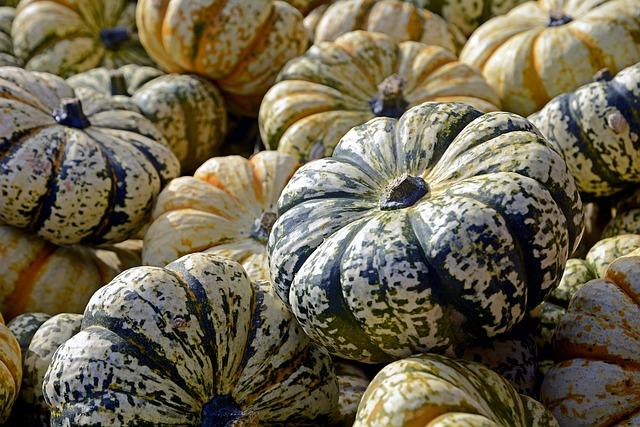 Pumpkins, Gourds, Vegetables, Harvest, Produce, Fresh