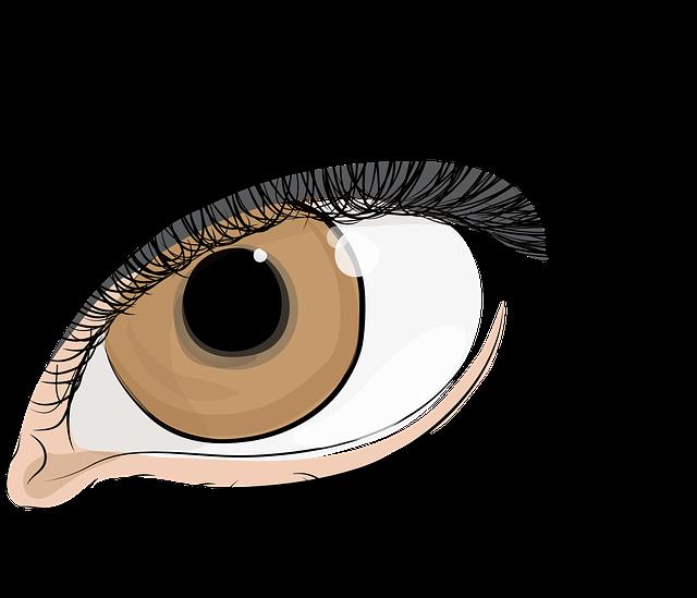 The Eye Of Women, Eyelashes, The Iris Of The Eye, Pupil