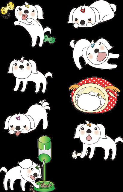 Puppy, Maltese, Animal, Dog, Cute, Played, Pet