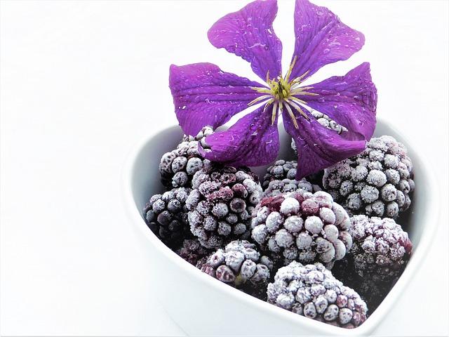 Blackberries, Frozen, Clematis, Purple, Blossom, Bloom