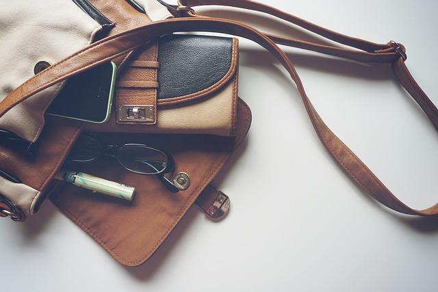 Handbag, Purse, Fashion, Female, Accessories