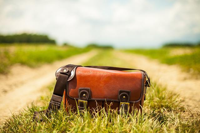 Purse, Handbag, Brown, Country Lane, Leather, Nature