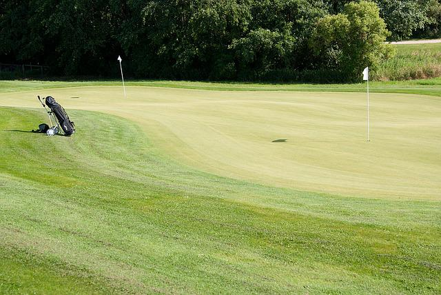 Green, Golf Club, Putten, Area