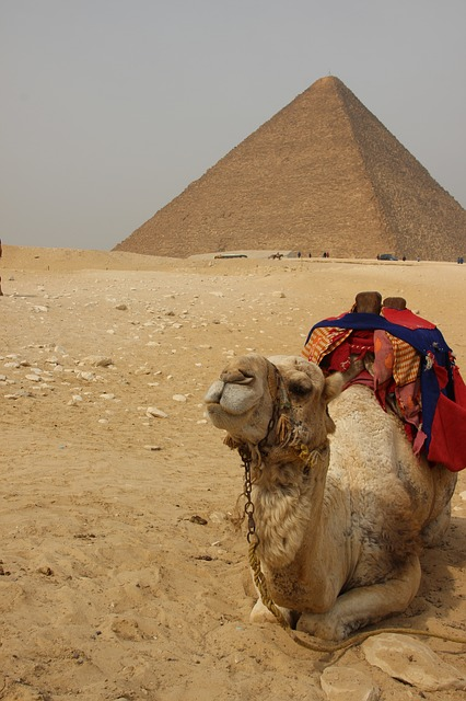 Egypt, Africa, Pyramid, Traveling