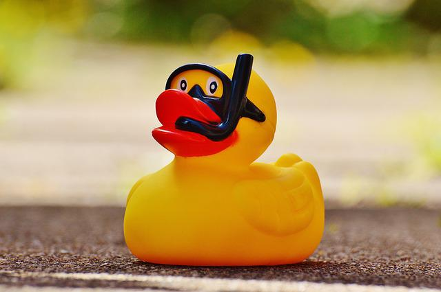 Rubber Duck, Bath Duck, Quietscheente, Funny Summer